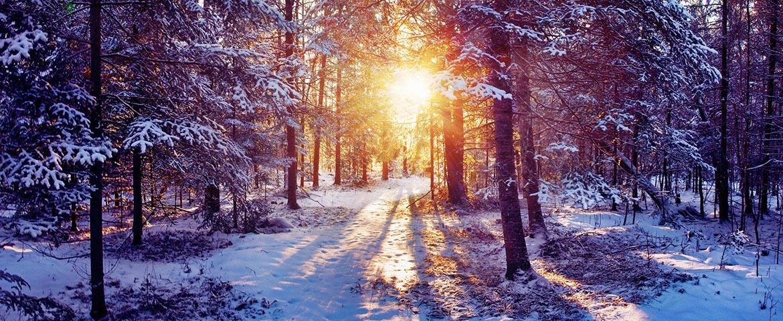 snow_img1_ua