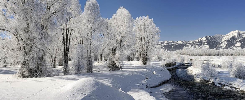 snow_img5_ua